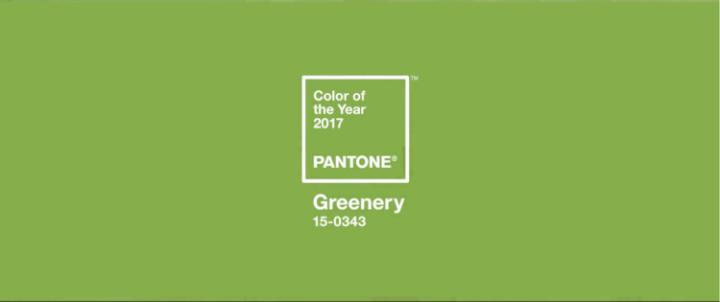 Le Greenery : la couleur del'année!